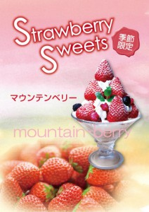 mountain_berry